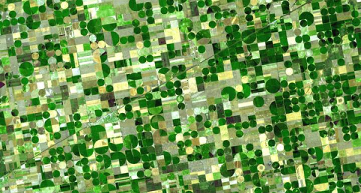 The green circles in this satellite image of southwestern Kansas are crops being watered by central pivot irrigation, which draws water from a well in the center of each field. Some of the water is groundwater from deep under the Great Plains states. (Credit: NASA)